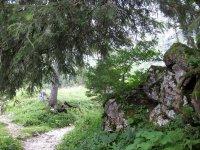 Tutzinger Hütte: Bild #26