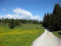 Rastnerhütte: Bild #29