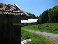 Schronbachtal: Bild #11
