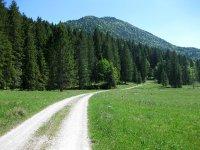 Schronbachtal: Bild #12