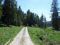 Schronbachtal: Bild #13