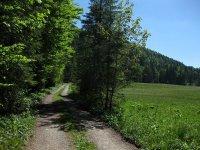 Schronbachtal: Bild #15