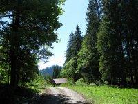 Schronbachtal: Bild #17