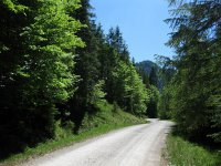 Schronbachtal: Bild #24