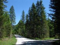 Schronbachtal: Bild #27
