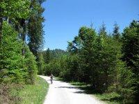 Schronbachtal: Bild #29