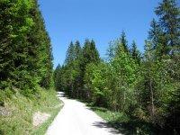 Schronbachtal: Bild #31