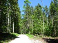 Schronbachtal: Bild #32