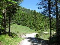 Schronbachtal: Bild #33