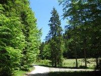 Rautberg Runde: Bild #36