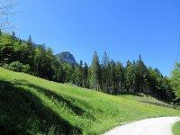 Osterfelderkopf: Bild #11