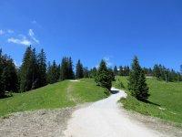 Osterfelderkopf: Bild #31