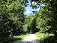 Brunnenkopfhütte: Bild #21