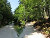 Brunnenkopfhütte: Bild #23