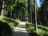 Brunnenkopfhütte: Bild #24