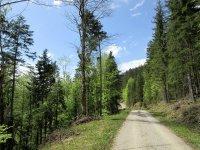 Jachenau-Isartal-Runde: Bild #14