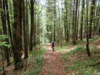 Jachenau-Isartal-Runde: Bild #23