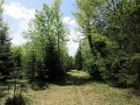 Jachenau-Isartal-Runde: Bild #34
