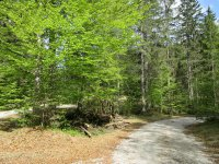 Jachenau-Isartal-Runde: Bild #46