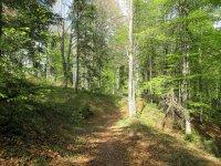 Jachenau-Isartal-Runde: Bild #54