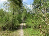 Jachenau-Isartal-Runde: Bild #78