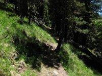 Lüsner Alm Flowtrail Runde: Bild #47