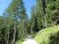 Wolfratshauser Hütte: Bild #11