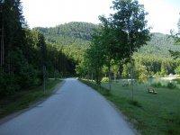 Altlacher Hochkopf Trail: Bild #2