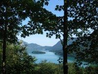 Altlacher Hochkopf Trail: Bild #5