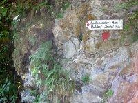 Altlacher Hochkopf Trail: Bild #6