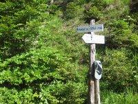 Altlacher Hochkopf Trail: Bild #12