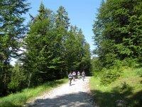 Altlacher Hochkopf Trail: Bild #14