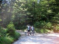 Altlacher Hochkopf Trail: Bild #20