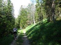 Altlacher Hochkopf Trail: Bild #25