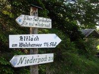 Altlacher Hochkopf Trail: Bild #28