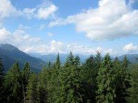 Altlacher Hochkopf Trail: Bild #30