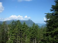 Altlacher Hochkopf Trail: Bild #31