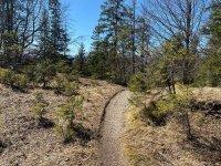 Altlacher Hochkopf Trail: Bild #35