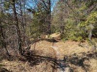 Altlacher Hochkopf Trail: Bild #36