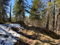 Altlacher Hochkopf Trail: Bild #38