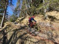 Altlacher Hochkopf Trail: Bild #41