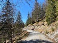 Altlacher Hochkopf Trail: Bild #43