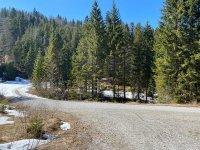 Altlacher Hochkopf Trail: Bild #48