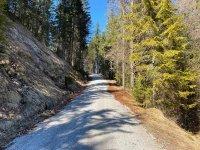 Altlacher Hochkopf Trail: Bild #49