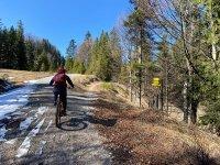 Altlacher Hochkopf Trail: Bild #50