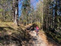 Altlacher Hochkopf Trail: Bild #51