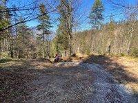 Altlacher Hochkopf Trail: Bild #53