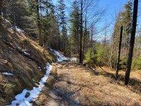 Altlacher Hochkopf Trail: Bild #54