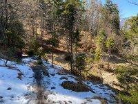 Altlacher Hochkopf Trail: Bild #57