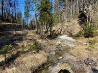 Altlacher Hochkopf Trail: Bild #58